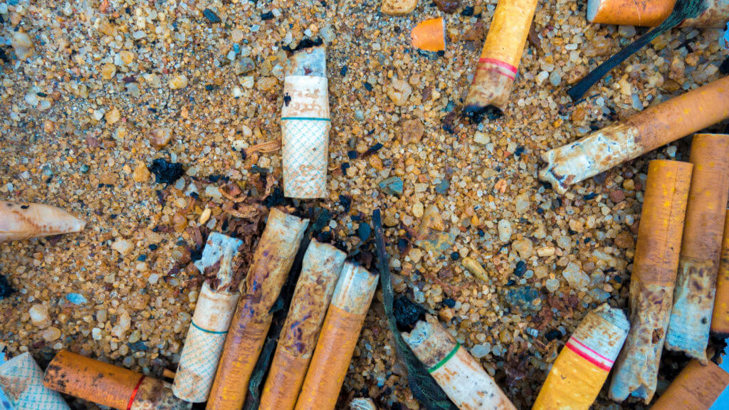 Cigarette Waste vs E-Cigarette Waste