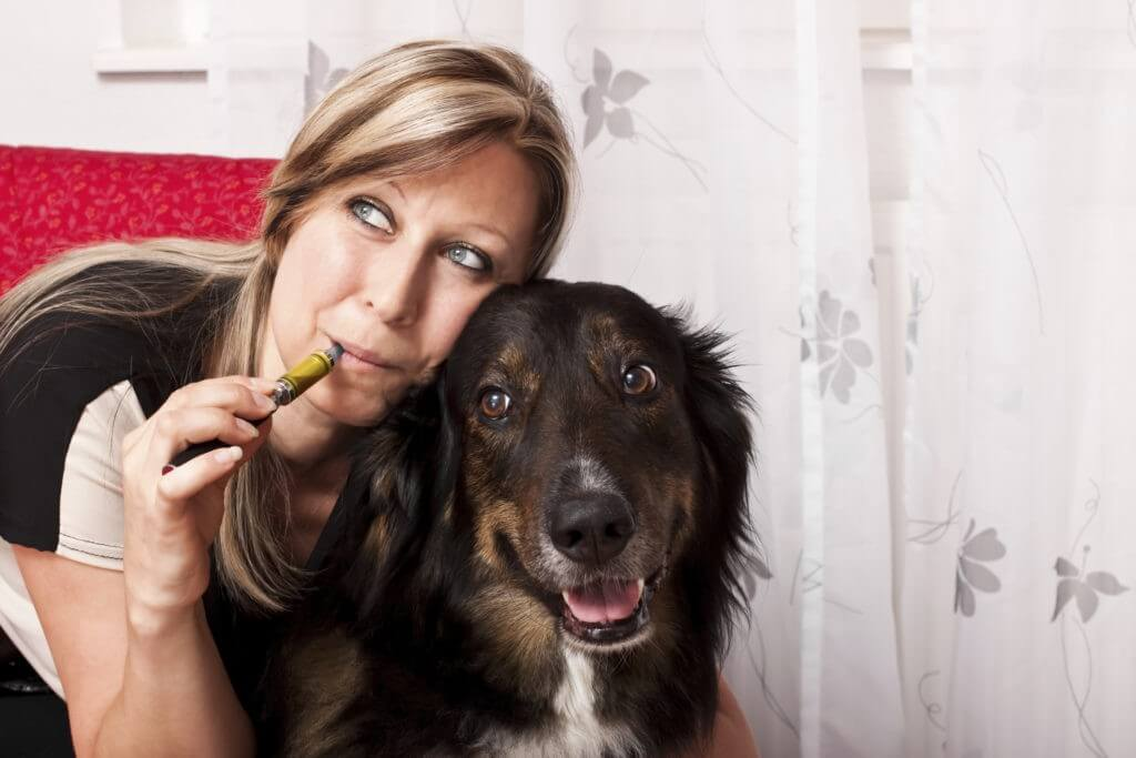 pets and e-cigarettes